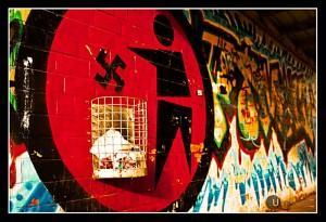 Zemmour et la liberté d'expression – par Shannon (JRCF)