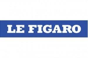 """Un article """"honnête"""" du Figaro à propos des cheminots en lutte"""