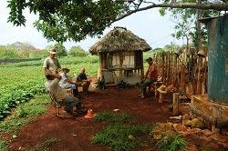 Cuba, le socialisme et le développement durable