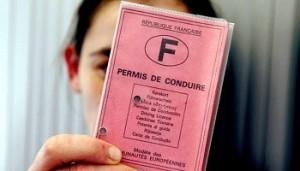 Contre l'euro – privatisation du permis de conduire [pétition]