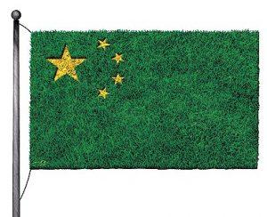 La Chine, avant-garde de l'écologie réelle ? par Guillaume Suing