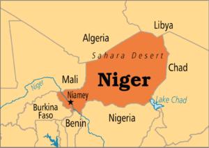 """NIGER : féroce répression du mouvement social ! Appel à faire """"pays mort"""" le lundi 2 avril"""