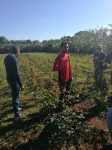 L'exemple du système agricole cubain : les JRCF témoignent depuis la coopérative César Escalante