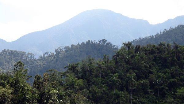 Le Brésil capitaliste détruit l'Amazonie, Cuba socialiste plante des arbres !