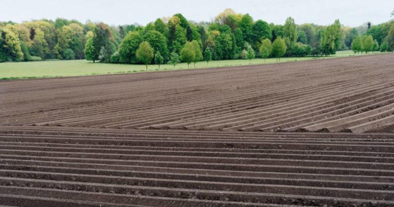 Macron, MEDEF, UE, détruisent nos conquis sociaux et l'agriculture française !