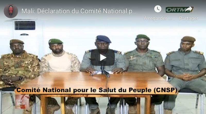MALI : la Charte de transition politique pour la reconstruction du Mali  proposée par le M5-RFP – Programme des militaires du Comité National pour le Salut du Peuple (CNSP)